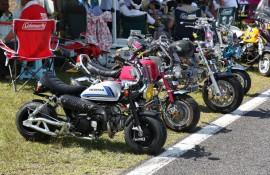 motochamp2